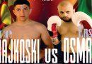 Професионален боксерски спектакл во Прилеп – Ице Трајкоски vs Енсар Осман