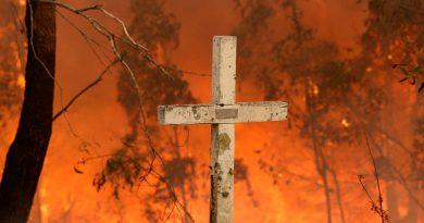 Пожарите предизвикаа вистинска катастрофа во Австралија