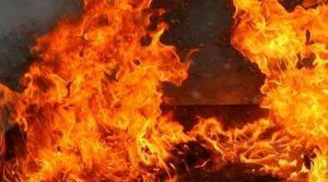 Наредба за мобилизација, тимови од повеќе градови се вклучуваат за гаснење на пожарите