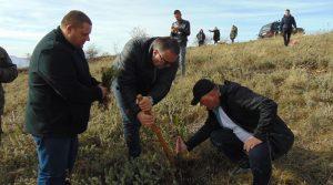 Акција за пошумување на 22 април Крушево