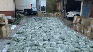 МВР: Уапсени 6 лица од криминалната група нарко дилери во вчерашната акција на Плетвар