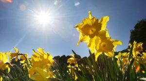 Сончево топло време со температура до 27 °C