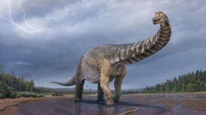 Откриен нов вид на диносаурус во Австралија – долг 30 метри
