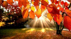Убаво есенско сончево време
