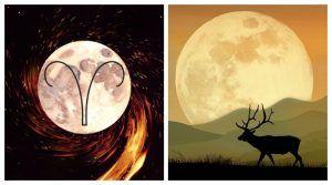 Полна Месечина на 20 октомври, Месечината на жетвата и Месечината на ловецот